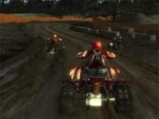 Quad Bike: Trail King